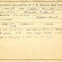 Thomas Wilmer Dewing, egg card # 629u