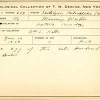 Thomas Wilmer Dewing, egg card # 543
