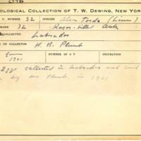 Thomas Wilmer Dewing, egg card # 024