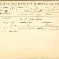 Thomas Wilmer Dewing, egg card # 788u