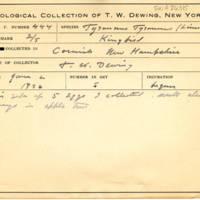 Thomas Wilmer Dewing, egg card # 334