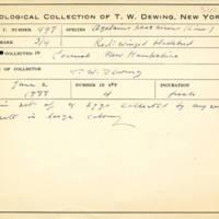 Thomas Wilmer Dewing, egg card # 673u