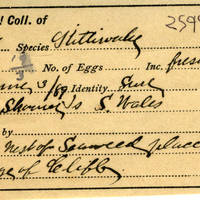 Thomas Wilmer Dewing, egg card # 035