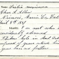 Charles A. Allen, egg card # 006