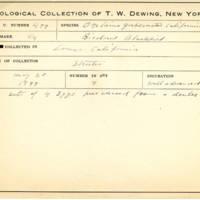 Thomas Wilmer Dewing, egg card # 402