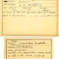 Thomas Wilmer Dewing, egg card # 278