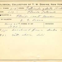 Thomas Wilmer Dewing, egg card # 161