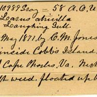 Clinton Mellen Jones, egg card # 287