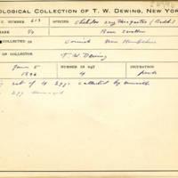 Thomas Wilmer Dewing, egg card # 750u
