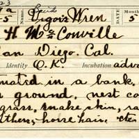 H McConville, egg card # hm008u