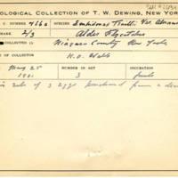 Thomas Wilmer Dewing, egg card # 366