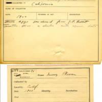 Thomas Wilmer Dewing, egg card # 643u