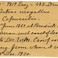 Clinton Mellen Jones, egg card # 089