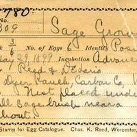 Reed & Delasio, egg card # r-d002u
