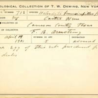 Thomas Wilmer Dewing, egg card # 818u