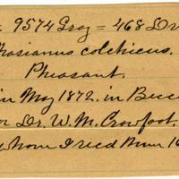 Clinton Mellen Jones, egg card # 091