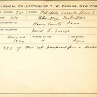 Thomas Wilmer Dewing, egg card # 827u