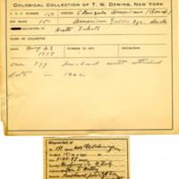 Thomas Wilmer Dewing, egg card # 114
