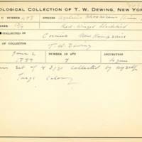 Thomas Wilmer Dewing, egg card # 679u