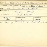 Thomas Wilmer Dewing, egg card # 472