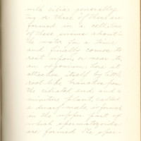 The fertilizing cell, its varying form and behavior by Nelly Peery, 1890, Page 42