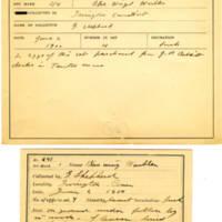 Thomas Wilmer Dewing, egg card # 517