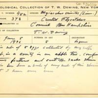 Thomas Wilmer Dewing, egg card # 345