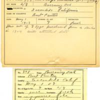 Thomas Wilmer Dewing, egg card # 262