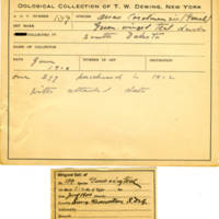 Thomas Wilmer Dewing, egg card # 101