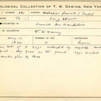 Thomas Wilmer Dewing, egg card # 697u