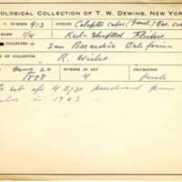 Thomas Wilmer Dewing, egg card # 305