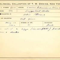 Thomas Wilmer Dewing, egg card # 503