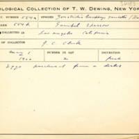 Thomas Wilmer Dewing, egg card # 692u