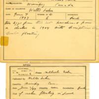 Thomas Wilmer Dewing, egg card # 004