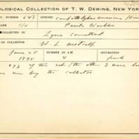 Thomas Wilmer Dewing, egg card # 777u