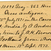 Clinton Mellen Jones, egg card # 175