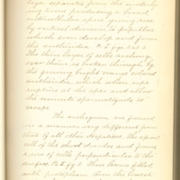 A brief description of nine species of Hepaticae found in the vicinity of Iowa City by Mary F. Linder, 1886, Page 14