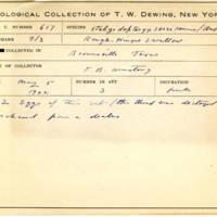 Thomas Wilmer Dewing, egg card # 500