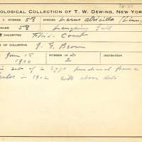 Thomas Wilmer Dewing, egg card # 632u