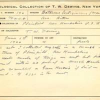 Thomas Wilmer Dewing, egg card # 135
