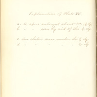 A brief description of nine species of Hepaticae found in the vicinity of Iowa City by Mary F. Linder, 1886, Page 97