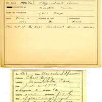 Thomas Wilmer Dewing, egg card # 445