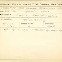 Thomas Wilmer Dewing, egg card # 668u
