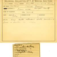 Thomas Wilmer Dewing, egg card # 126