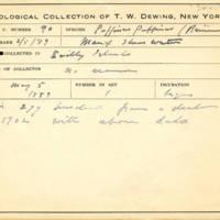 Thomas Wilmer Dewing, egg card # 638u