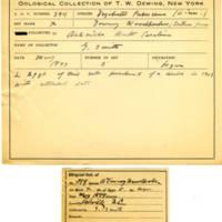 Thomas Wilmer Dewing, egg card # 280