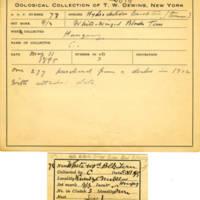Thomas Wilmer Dewing, egg card # 059