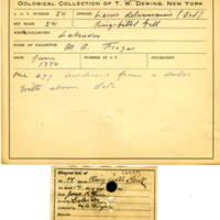 Thomas Wilmer Dewing, egg card # 044