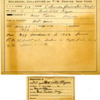 Thomas Wilmer Dewing, egg card # 204