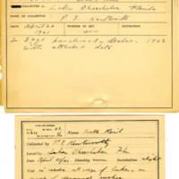 Thomas Wilmer Dewing, egg card # 156